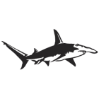 Наклейка «Акула-молот»