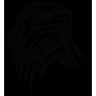 Наклейка «Орел v12»