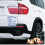 Наклейка «Девчонки в машине»
