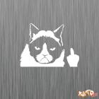 Наклейка «Сердитый Кот»