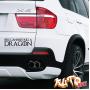 Наклейка «Fire can't kill a dragon»