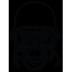 Наклейка «Army Skull v2»