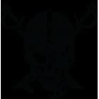 Наклейка «Skull WS»