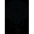 Наклейка «Skull DJ TS»