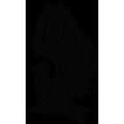Наклейка «Орел v6»