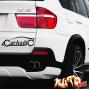 Наклейка «Car Audio»