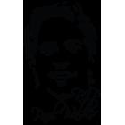 Наклейка «Paul Walker»