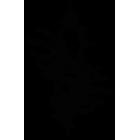 Наклейка «Череп»