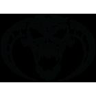 Наклейка «Skull»