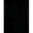 Наклейка «Дракон v2»